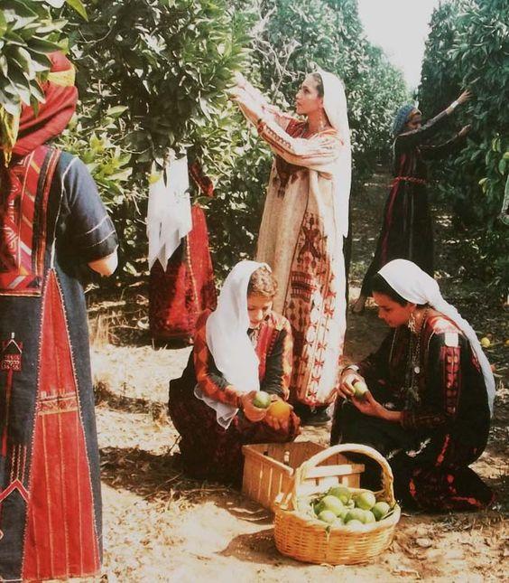 Femmes et Patrimoine de Palestine