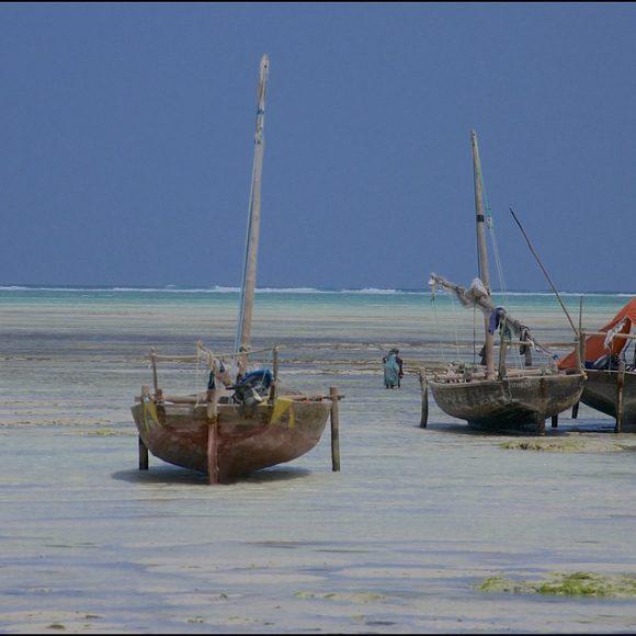 Le boutre : au cœur de l'histoire maritime et de la construction identitaire d'Oman